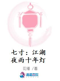 七寸:江湖夜雨十年灯TXT下载