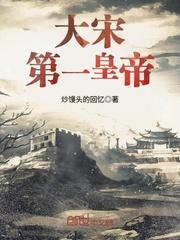 大宋第一皇帝TXT下载