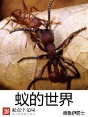 蚁的世界TXT下载
